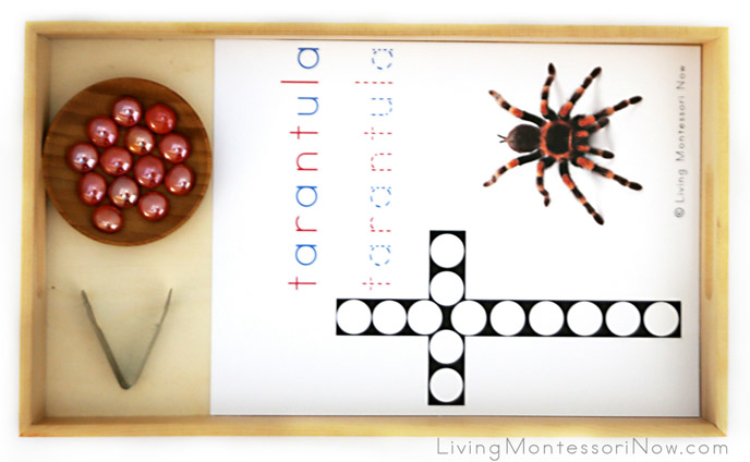 Tarantula Do-a-Dot Tray with Glass Gems and Strawberry Huller