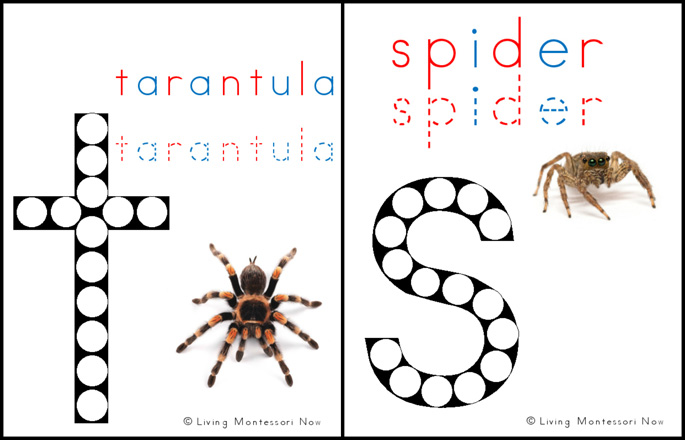 Free Tarantula and Spider Do-a-Dot Printables