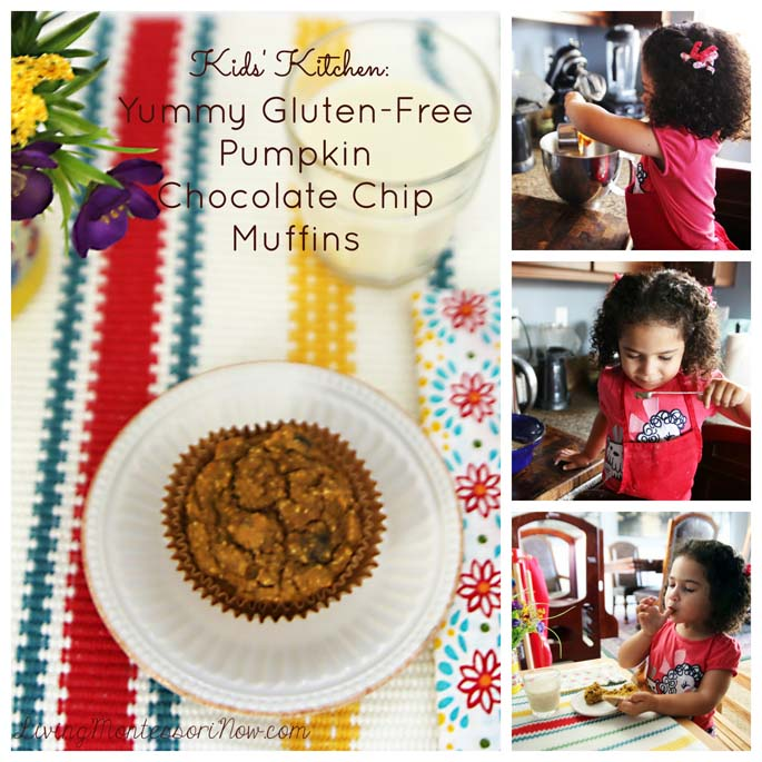 Yummy Gluten-Free Pumpkin Chocolate Chip Muffins