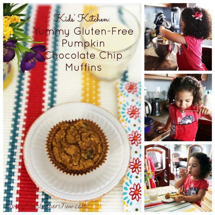Yummy Gluten-Free Pumpkin Chocolate Chip Muffins