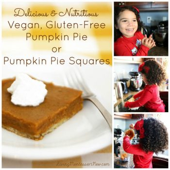 Vegan, Gluten-Free Pumpkin Pie or Pumpkin Pie Squares
