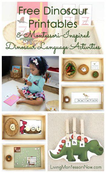 Free Dinosaur Printables and Montessori-Inspired Dinosaur Language Activities