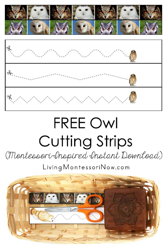 Free Owl Cutting Strips (Montessori-Inspired Instant Download)
