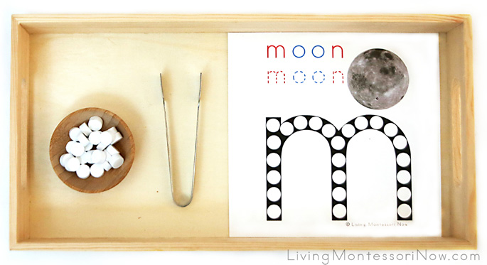 """M is for Moon"" Dot Transfer"