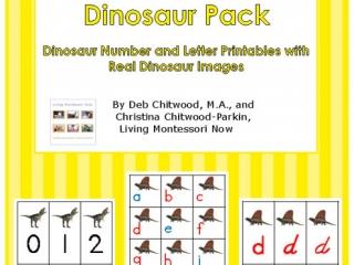 Montessori-Inspired Dinosaur Pack
