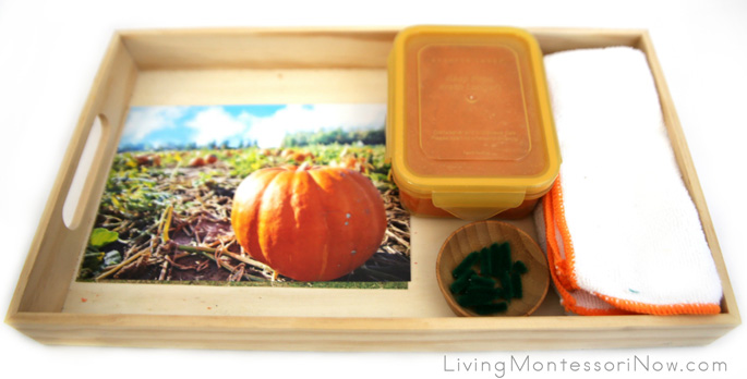 Montessori-Inspired Pumpkin Playdough Math Tray