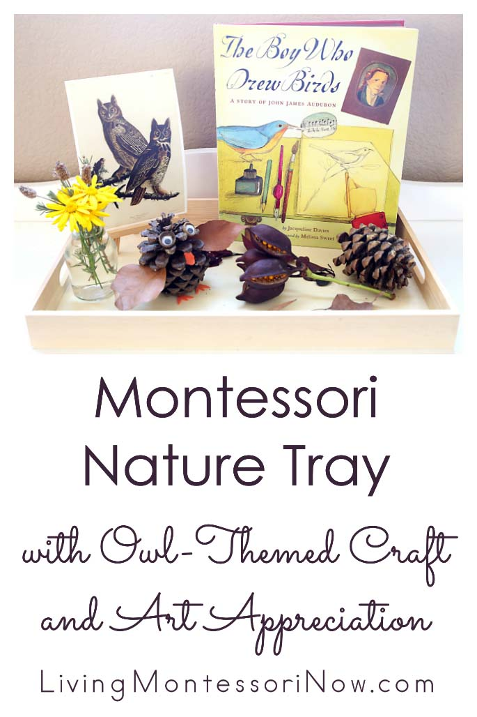 Montessori Nature Tray with Owl-Themed Craft and Art Appreciation