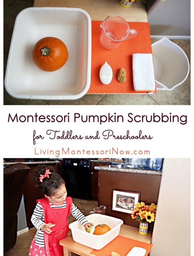 montessori-pumpkin-scrubbing-for-toddlers-and-preschoolers