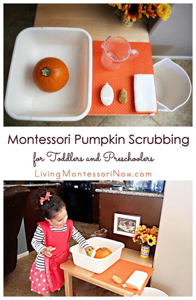 Montessori Pumpkin Scrubbing for Toddlers and Preschoolers