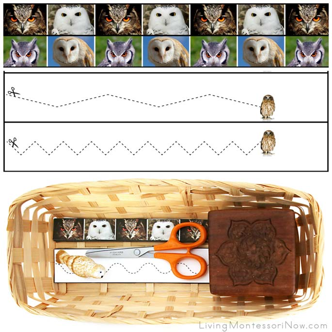 Owl Cutting Strips with Basket and Safari Ltd. Snowy Owl