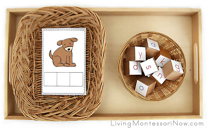 Phonetic CVC Pictures with Letter Cubes
