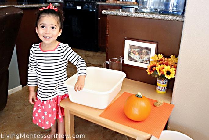 Proud of Her Pumpkin Scrubbing Work