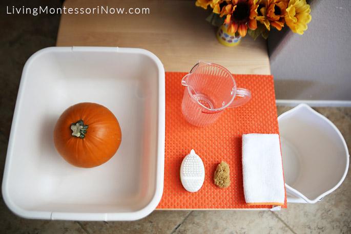 Pumpkin Scrubbing Setup