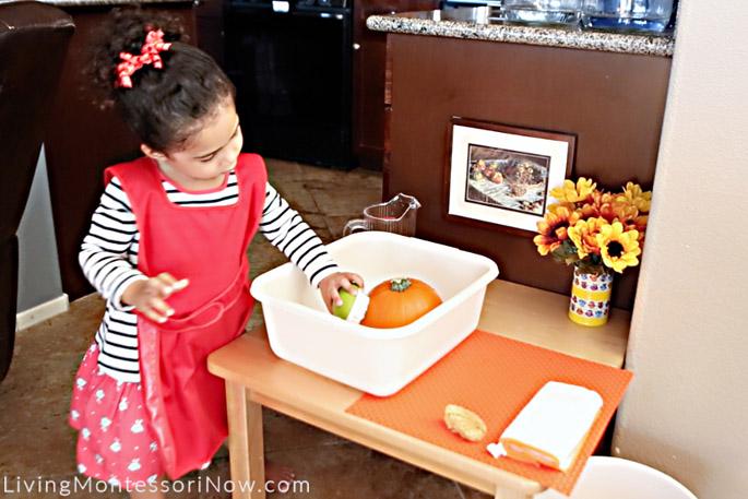 Scrubbing a Pumpkin with a Vegetable Brush