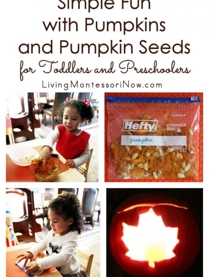simple-fun-with-pumpkins-and-pumpkin-seeds-for-toddlers-and-preschoolers