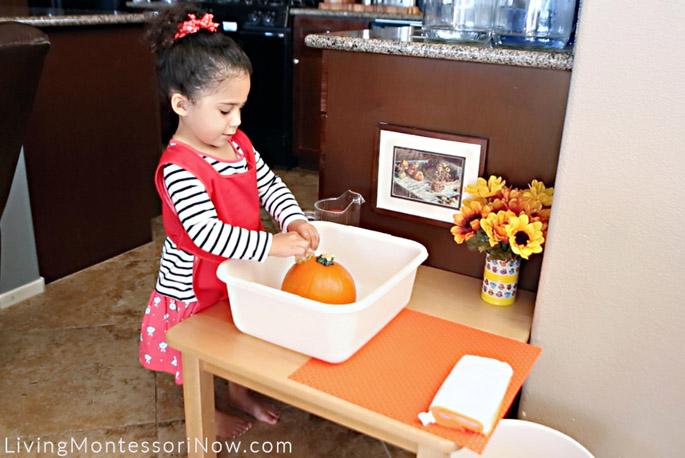 Squeezing a Sponge and Scrubbing a Pumpkin