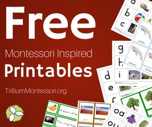 Trillium Montessori