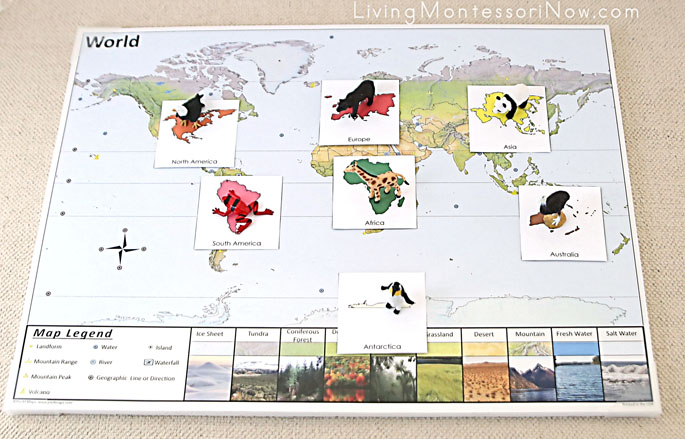 Animals of the Continents and Continent Cards on the World Pin It Map