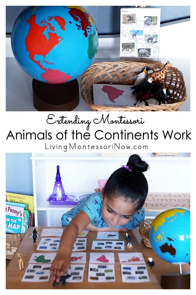 Extending Montessori Animals of the Continents Work