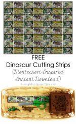 Free Dinosaur Cutting Strips (Montessori-Inspired Instant Download) – Montessori Monday