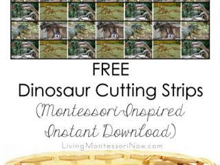 FREE Dinosaur Cutting Strips (Montessori-Inspired Instant Download)