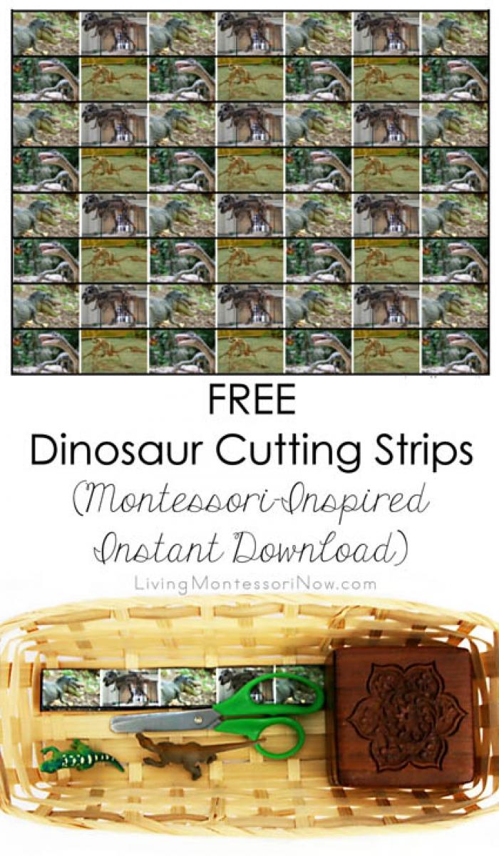 FREE Dinosaur Cutting Strips (Montessori-Inspired Instant Download)