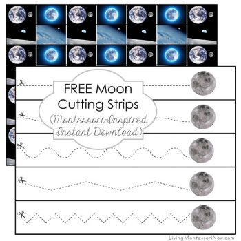 https://livingmontessorinow.com/free-moon-cutting-strips-montessori-inspired-instant-download/