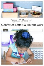 Special Focus on Montessori Letters and Sounds Work