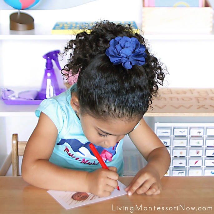 Tracing Letters for Montessori Letters and Sounds Book