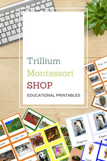 Trillium Montessori Shop Educational Printables