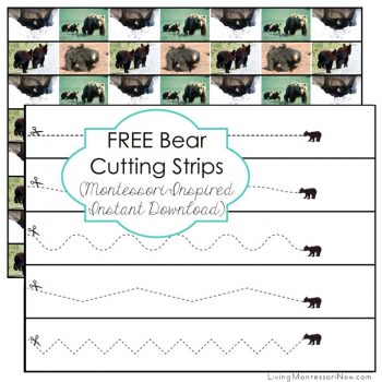 FREE Bear Cutting Strips
