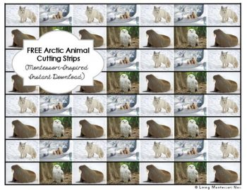 Free Arctic Animal Cutting Strips