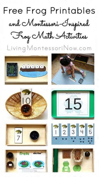 Free Frog Printables and Montessori-Inspired Frog Math Activities