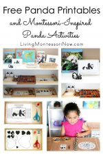 Free Panda Printables and Montessori-Inspired Panda Activities