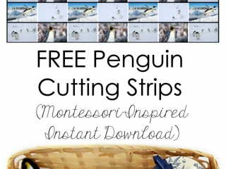 Free Penguin Cutting Strips (Montessori-Inspired Instant Download)