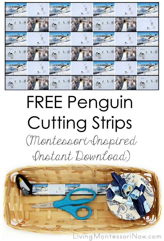 Free Penguin Cutting Strips (Montessori-Inspired Instant Download) – Montessori Monday