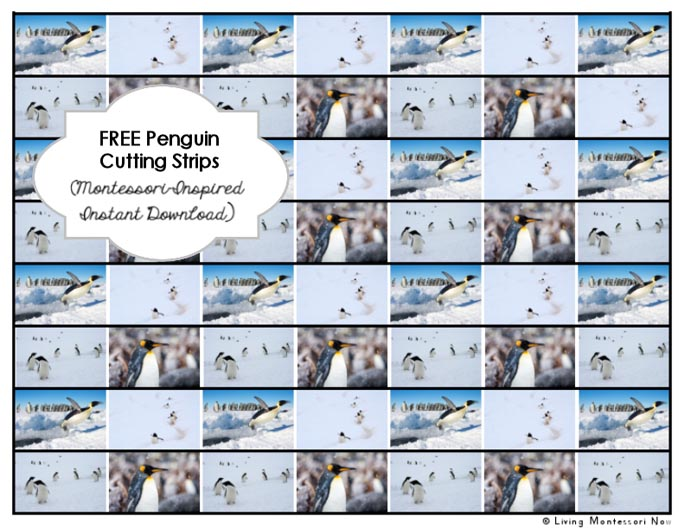 Free Penguin Cutting Strips