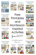 More Than Seven Years' Worth of Free Printables and Montessori-Inspired Activities