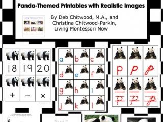 Montessori-Inspired Panda Pack