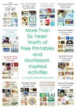 Free Printables and Montessori-Inspired Activities from 2016 {Montessori Monday}
