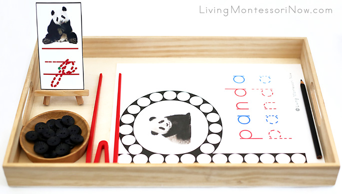 Panda Do-a-Dot Letter P Tray with Button Transfer Using Quick Sticks