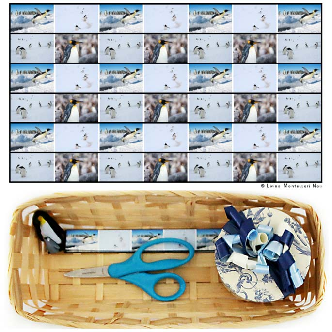 Penguin Cutting Strips with Basket