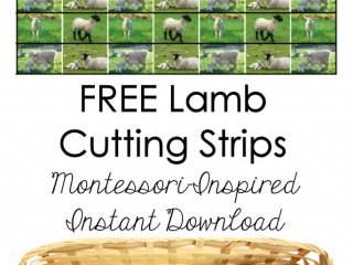 FREE Lamb Cutting Strips (Montessori-Inspired Instant Download)