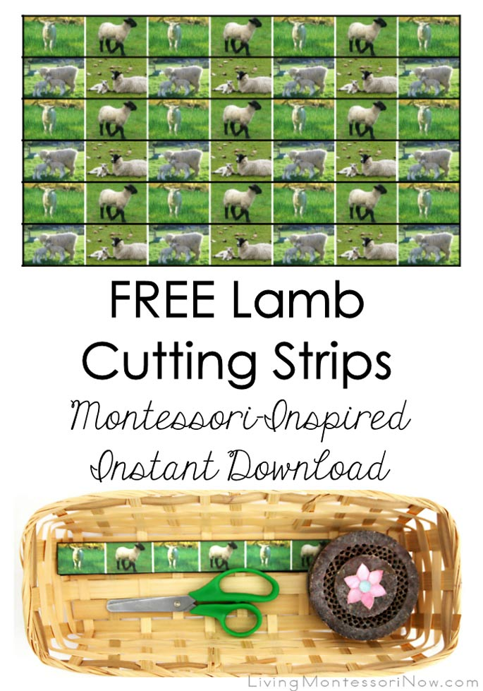 FREE Lamb Cutting Strips (Montessori-Inspired Instant Download) – Montessori Monday