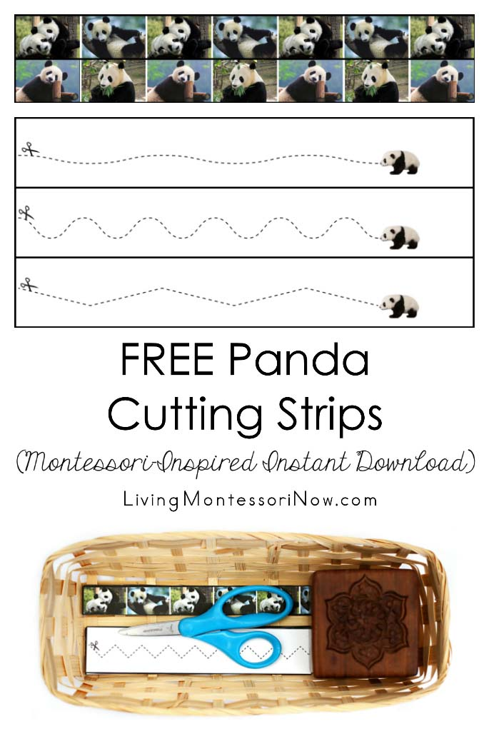FREE Panda Cutting Strips (Montessori-Inspired Instant Download)