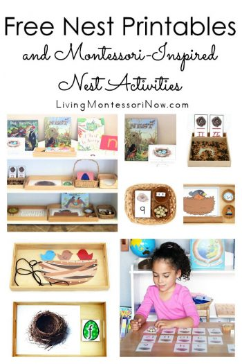 Free Nest Printables and Montessori-Inspired Nest Activities
