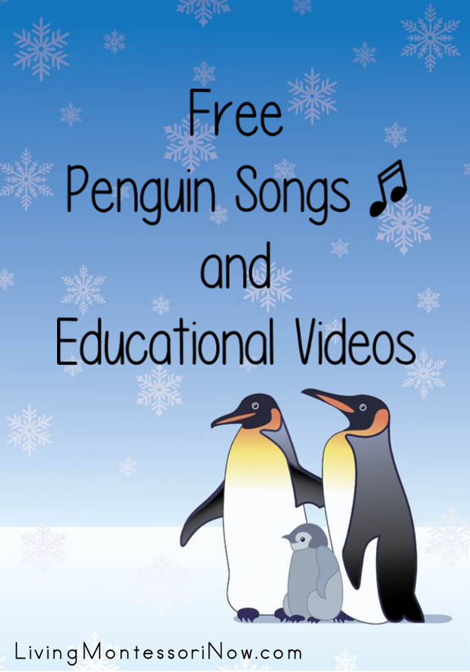 Free Penguin Songs and Educational Videos - Living Montessori Now