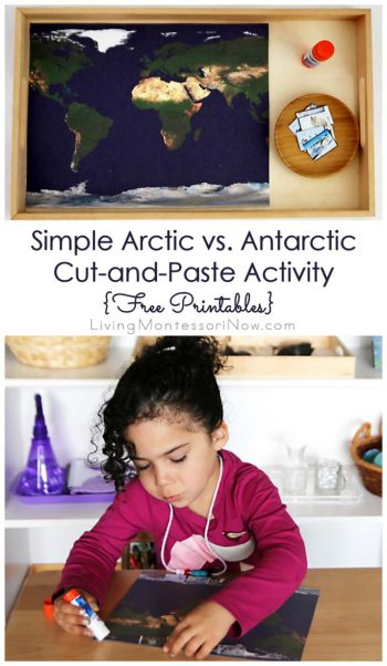 Simple Arctic vs. Antarctic Cut-and-Paste Activity {Free Printables}