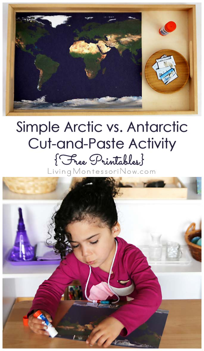 Simple Arctic vs. Antarctic Cut-and-Paste Activity {Free Printables} – Montessori Monday