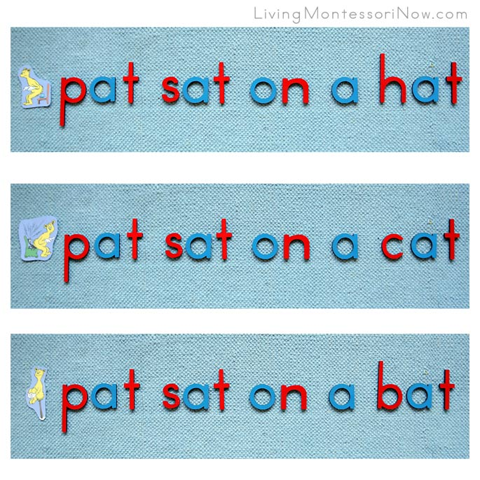 Dr Seuss Pictures and Sentences about Pat with Montessori Movable Alphabet